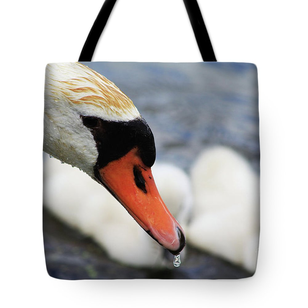Swan Tote Bag featuring the photograph Drippy Nose by Alyce Taylor