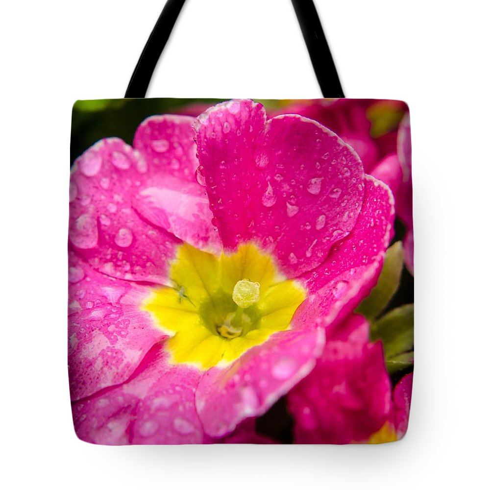 Flower Tote Bag featuring the photograph Droplets On Flower by Arun Rohila