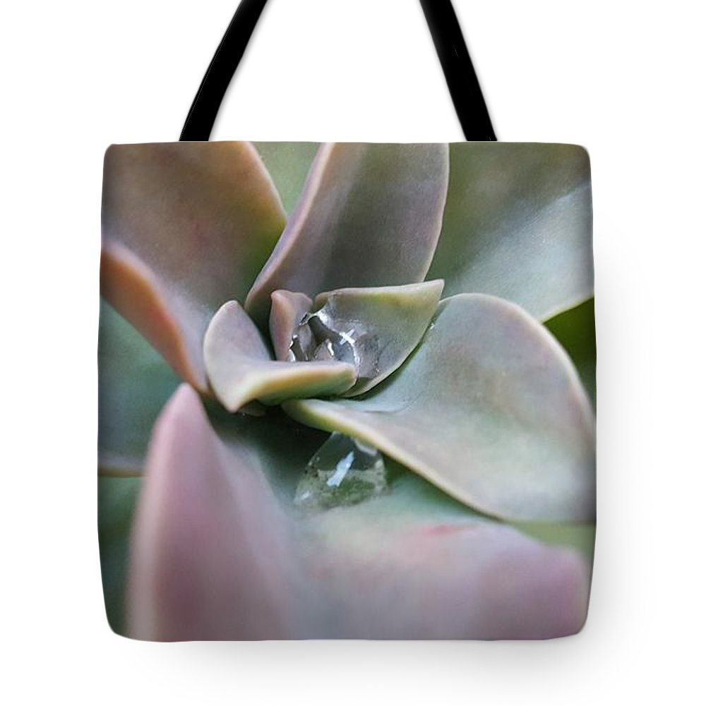 Water Tote Bag featuring the photograph Droplets On Succulent by Ian Kowalski