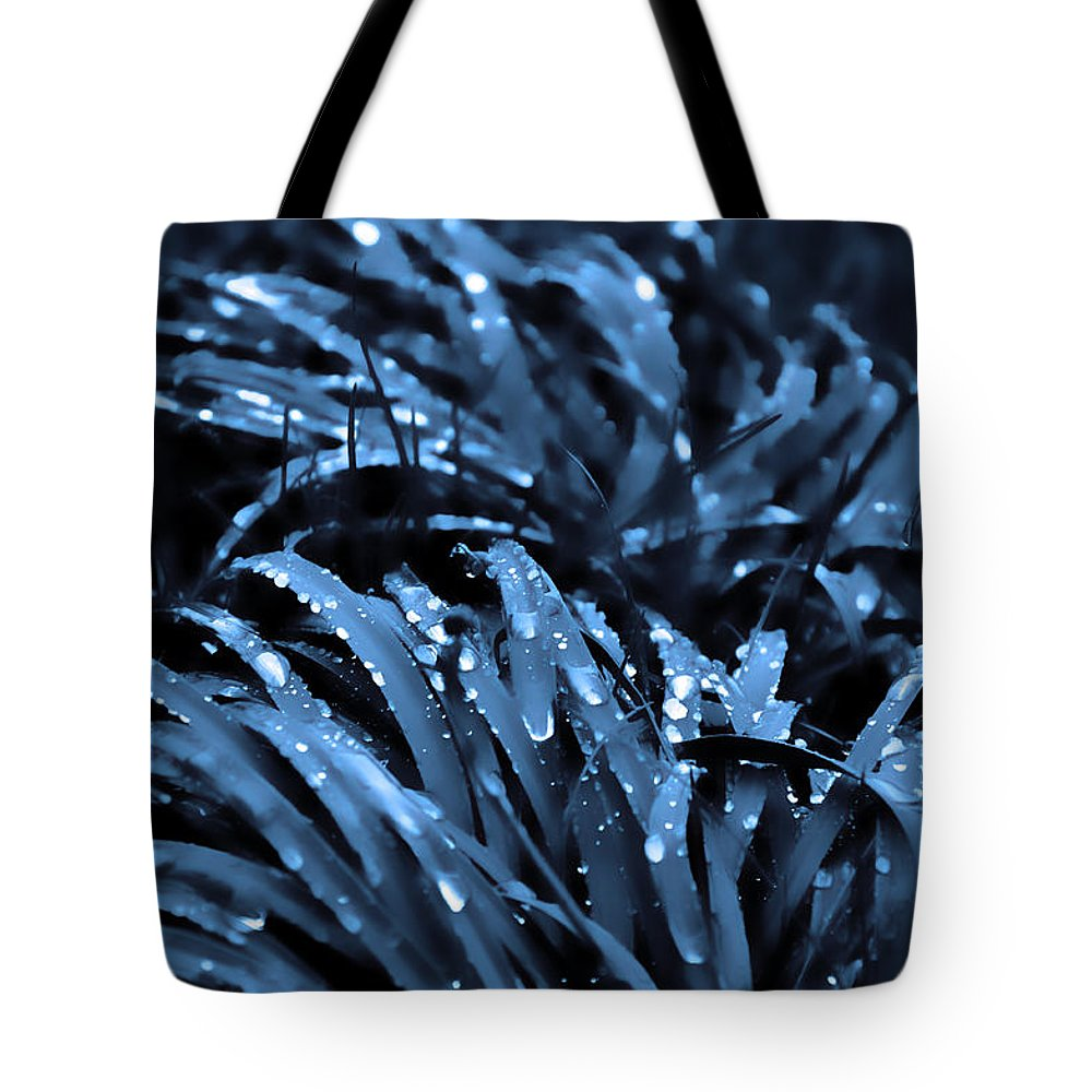Drops And Blue Grass Tote Bag featuring the photograph Drops And Blue Grass by Damijana Cermelj