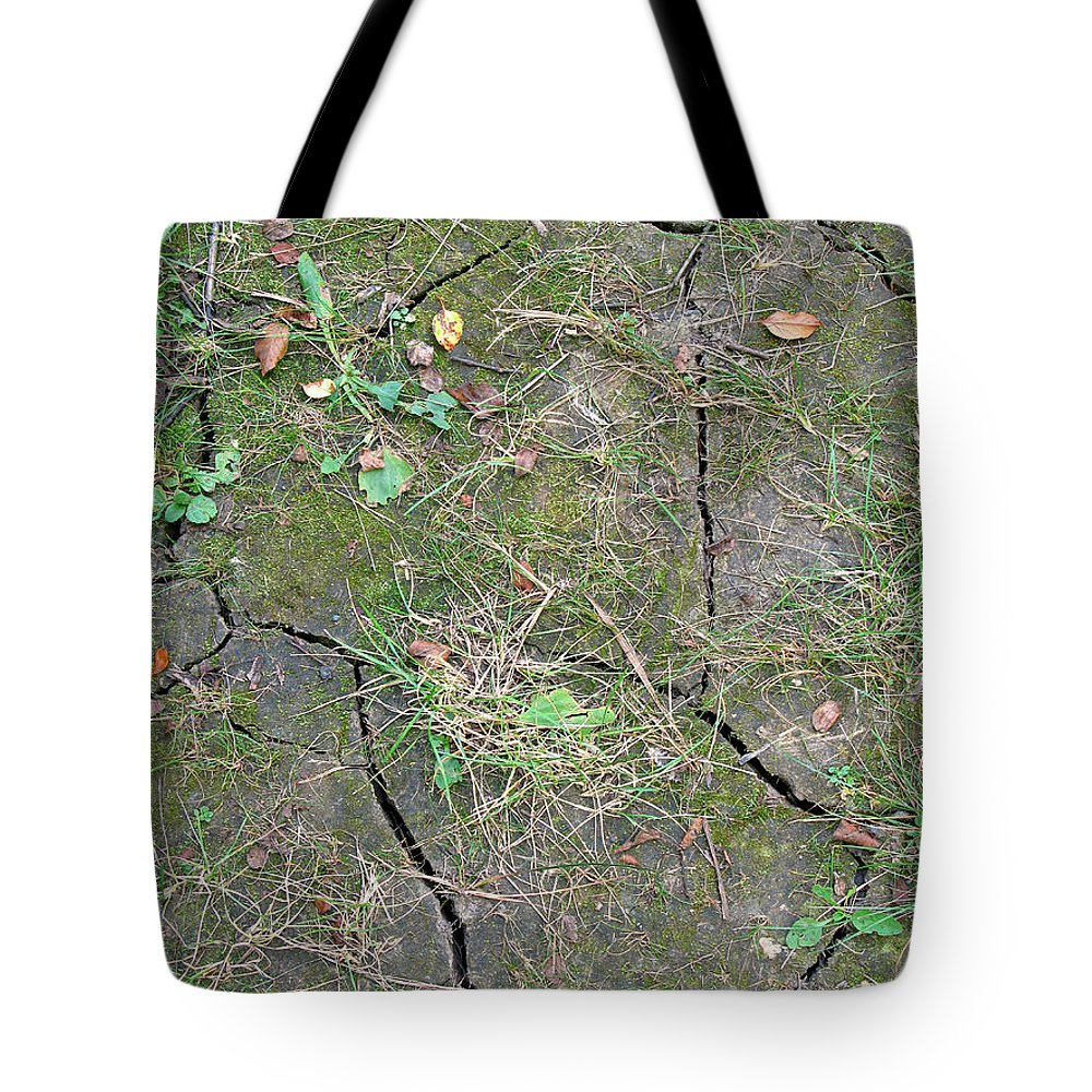 Thirsty Tote Bag featuring the photograph Dry And Thirsty Land by Ann Horn