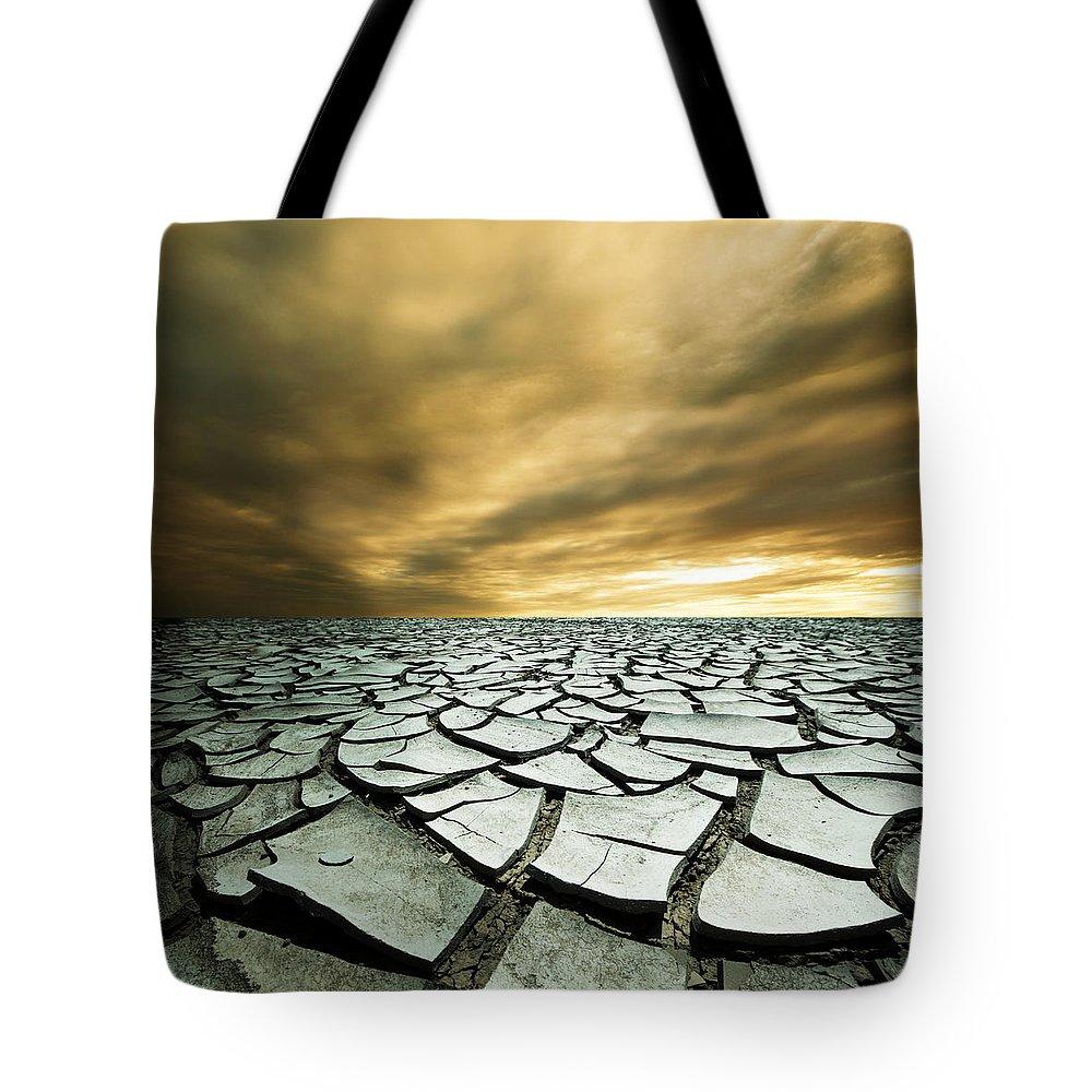 Desert Tote Bags