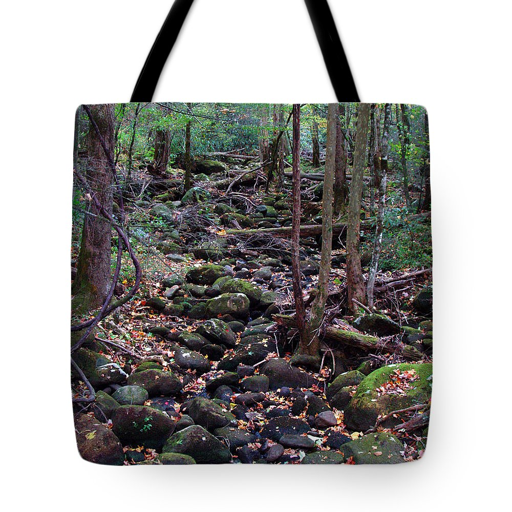 River Tote Bag featuring the photograph Dry River Bed- Autumn by Nancy Mueller