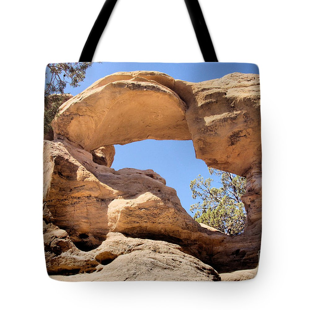 Sandstone Tote Bag featuring the photograph Dsc01900 by William Schlabach
