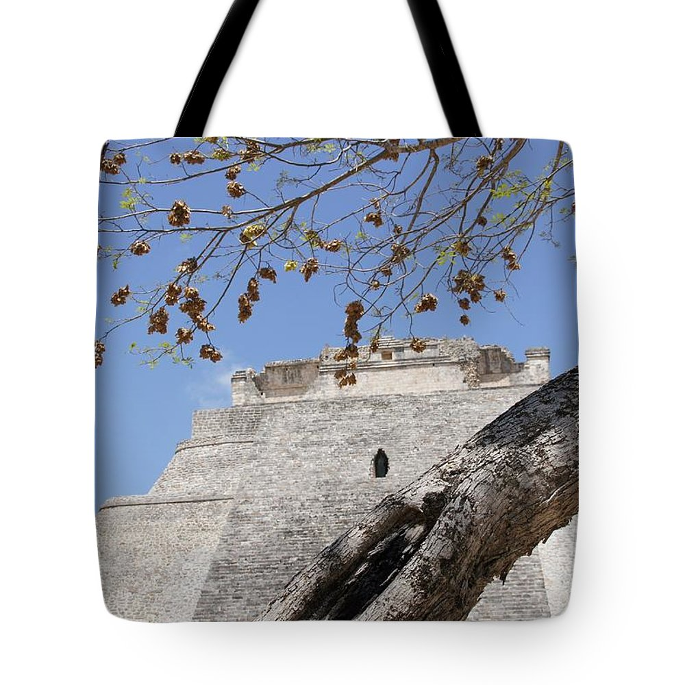 Mexican Tote Bag featuring the photograph Dsc01958 by Hugh Caley