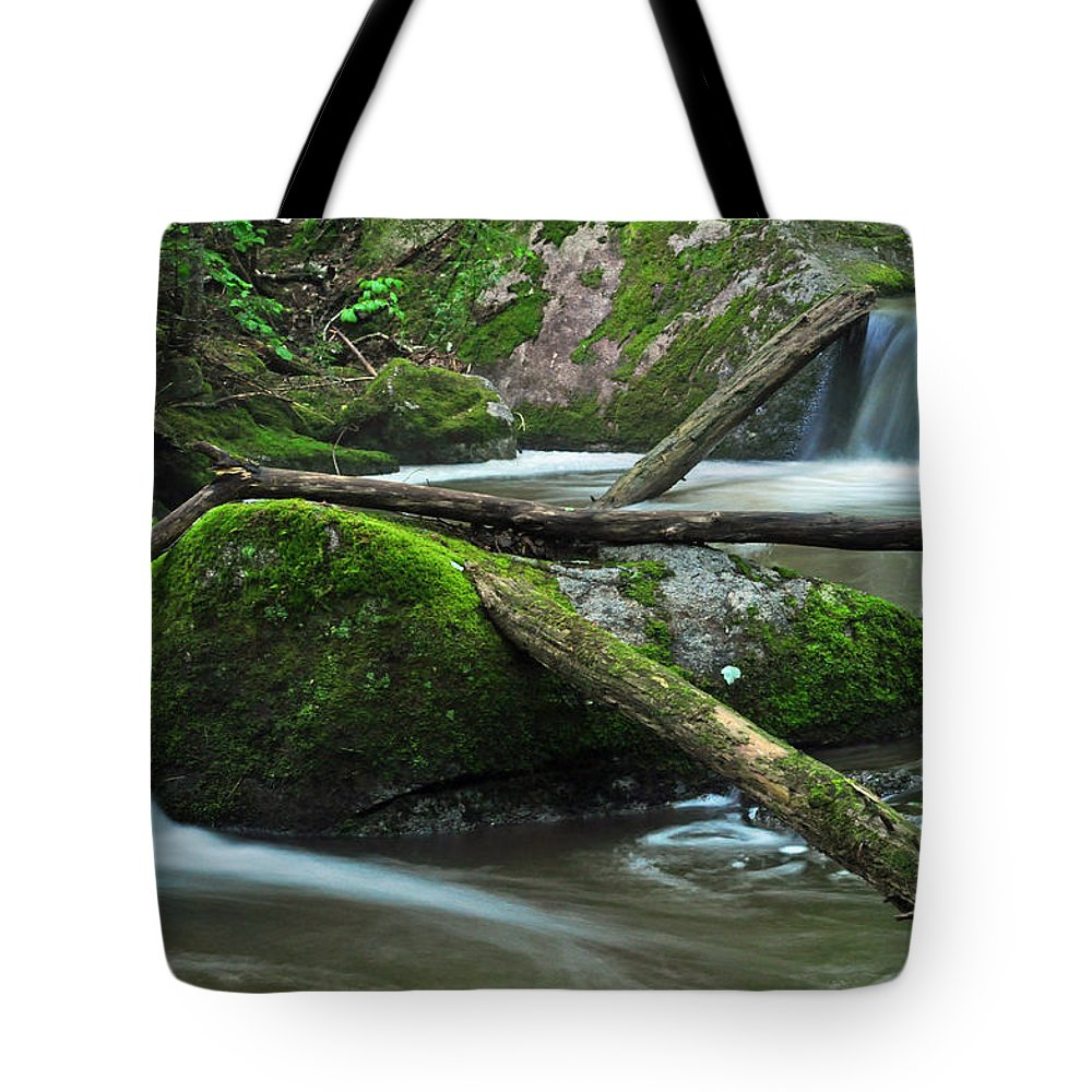 Stream Tote Bag featuring the photograph Dual Falls 2 by Glenn Gordon
