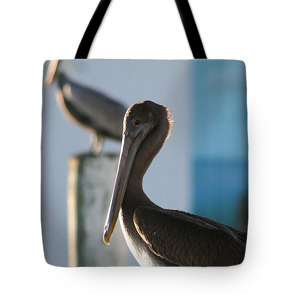 Pelican Tote Bag featuring the photograph Dual Pelicans by Mary Haber