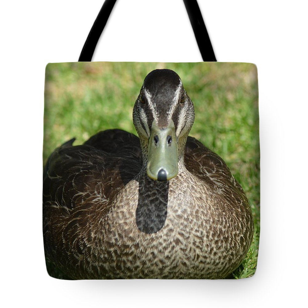 Duck Tote Bag featuring the photograph Duck by Daniel Hancock
