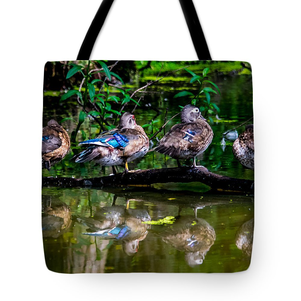 Duck Tote Bag featuring the photograph Duck Duck Duck Duck by Alicia Collins