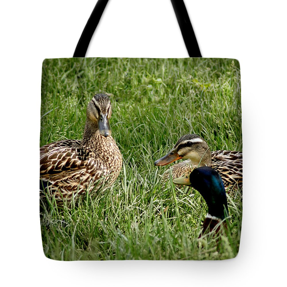 Usa Tote Bag featuring the photograph Duck Meeting At Frankenmuth by LeeAnn McLaneGoetz McLaneGoetzStudioLLCcom