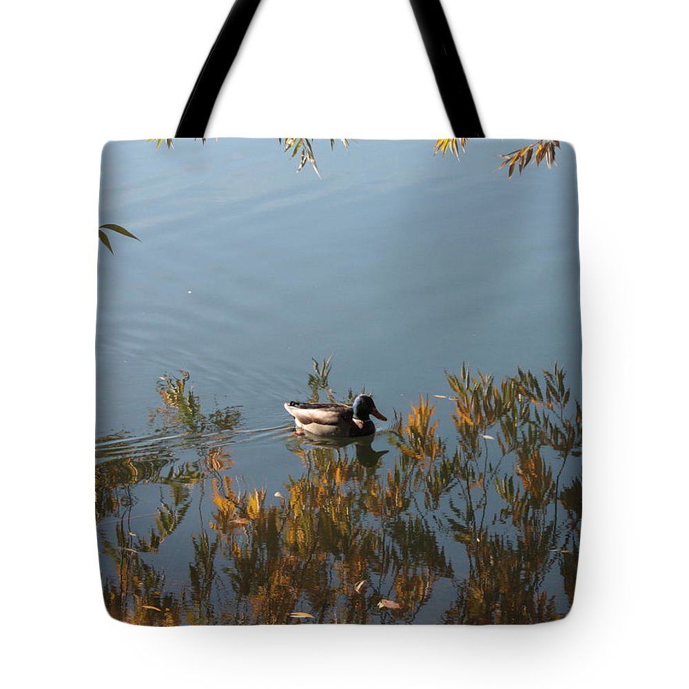 Autumn Tote Bag featuring the photograph Duck On Golden Pond by Carol Groenen