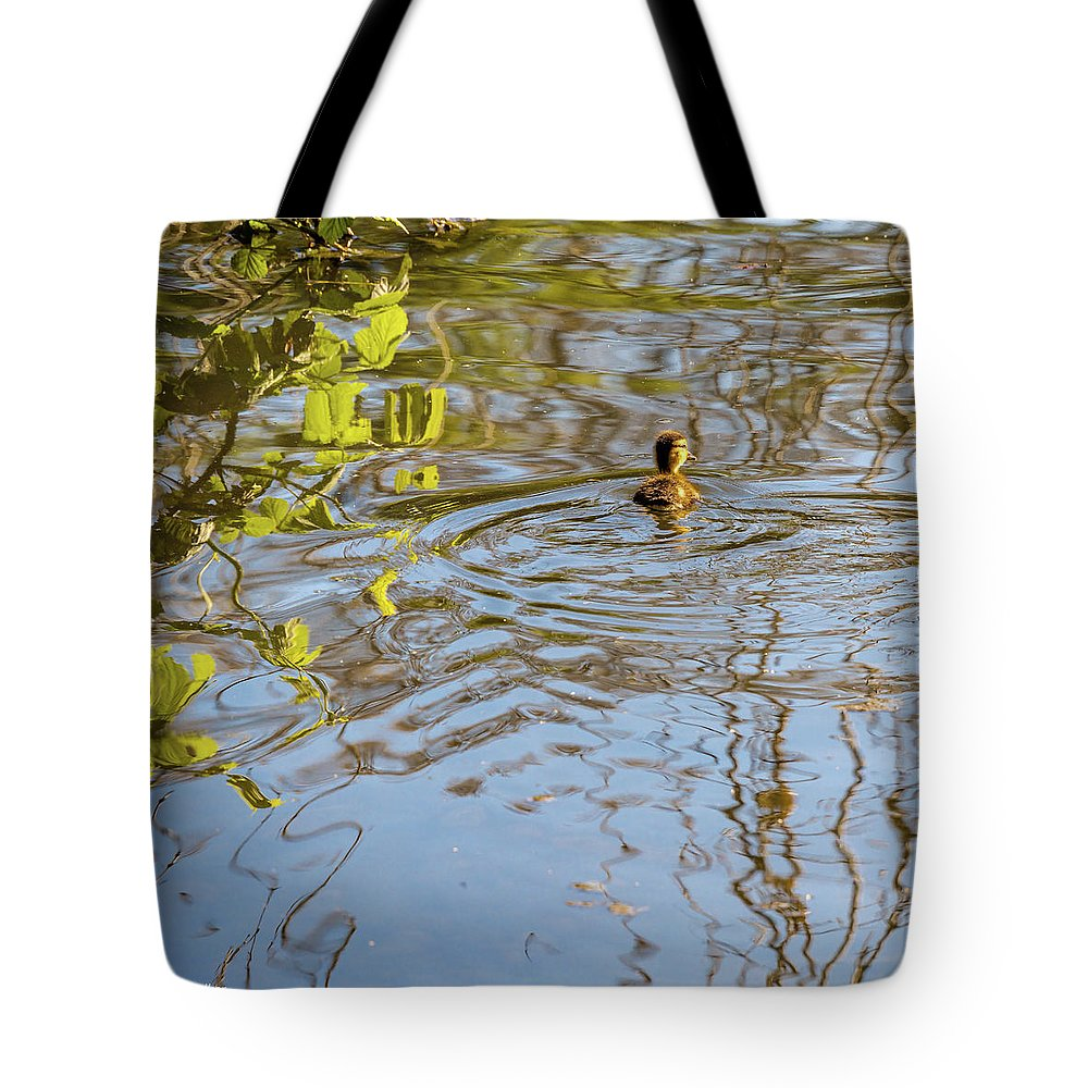 Crownest Park Tote Bag featuring the photograph Duckling by Mike Walker