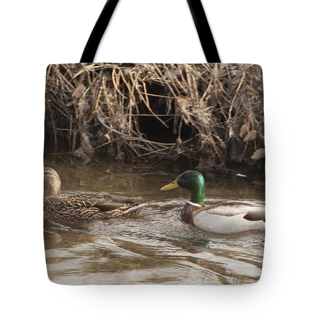 Ducks Tote Bag featuring the photograph Ducks by Steven Natanson