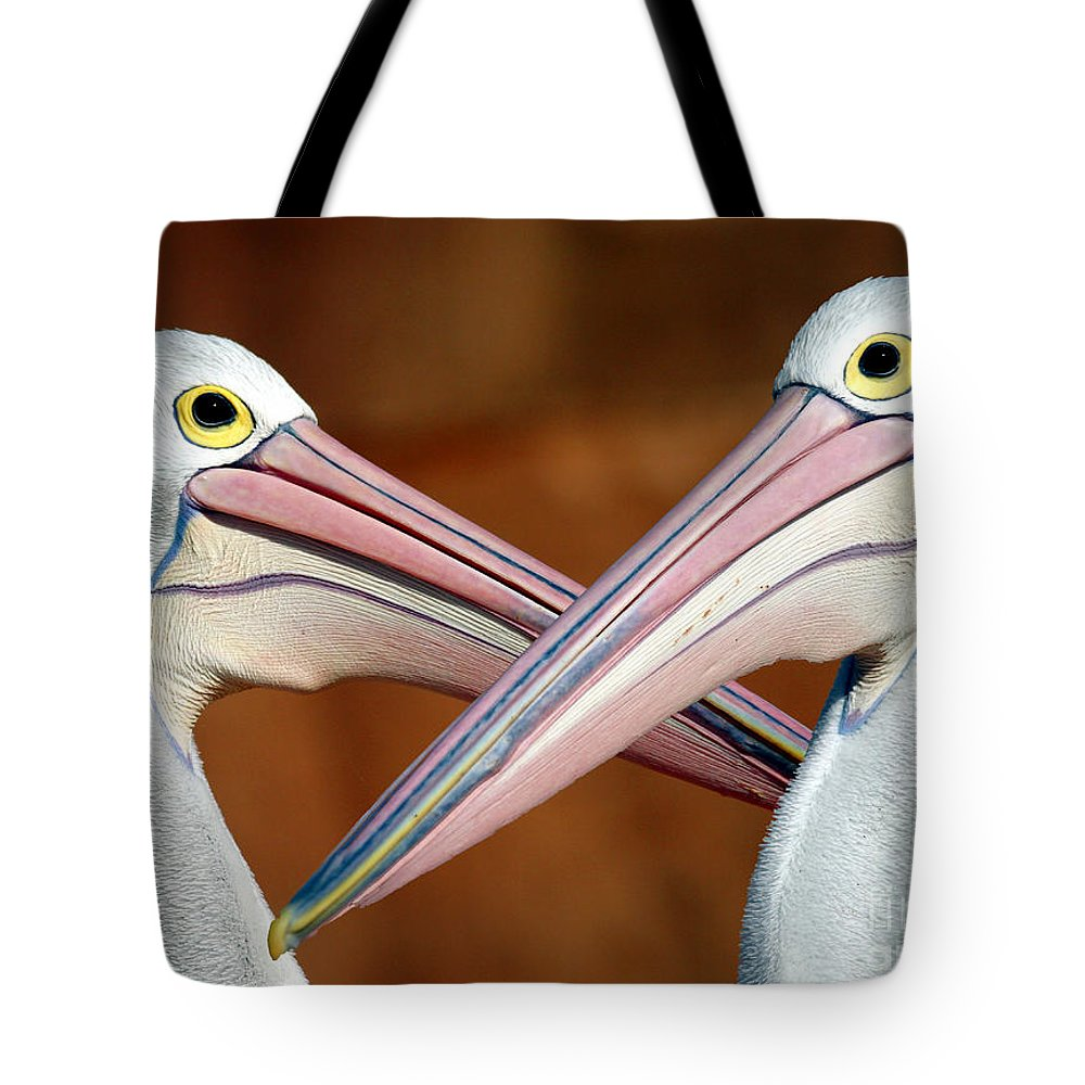 Duelling Pelicans Bird Australia Seabird Tote Bag featuring the photograph Duelling Pelicans by Sheila Smart Fine Art Photography