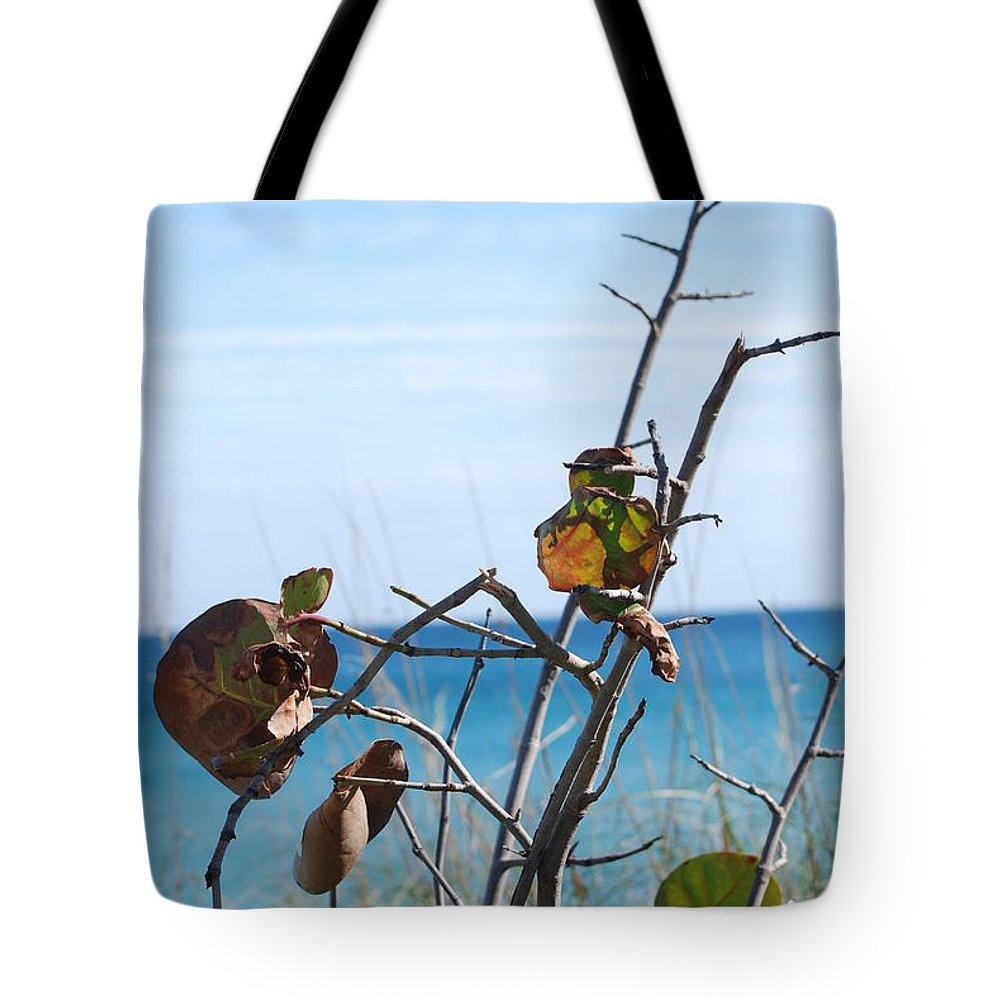 Ocean Tote Bag featuring the photograph Dune Plants by Rob Hans