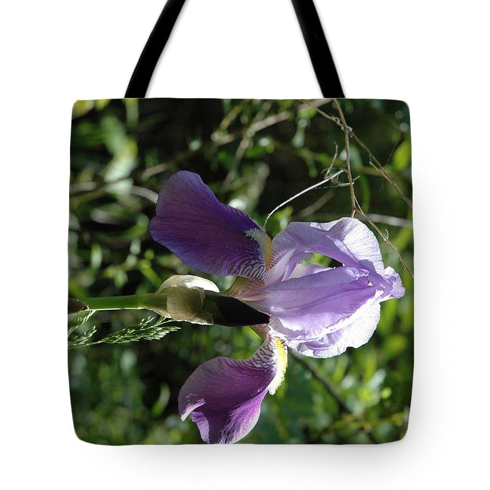 Usa Tote Bag featuring the photograph Dwarf Lake Iris by LeeAnn McLaneGoetz McLaneGoetzStudioLLCcom
