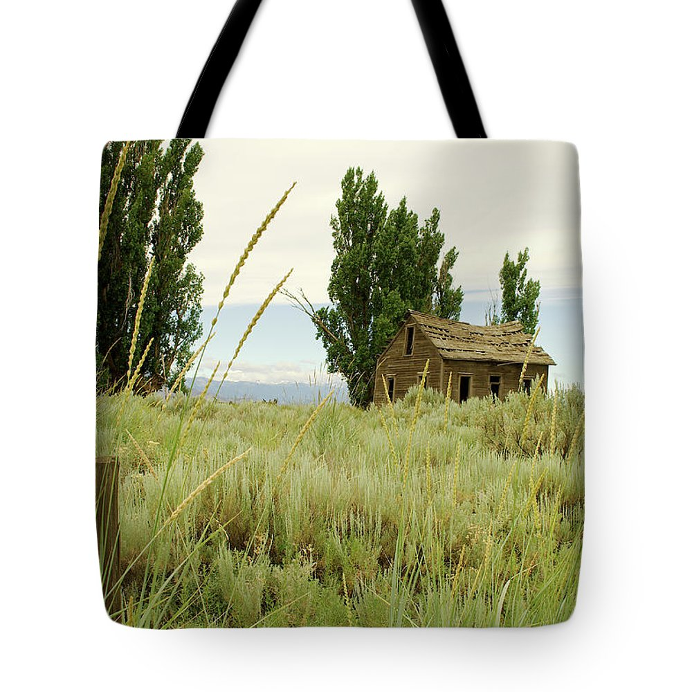 Dyer Tote Bag featuring the photograph Dyer Country Home by Troy Stapek