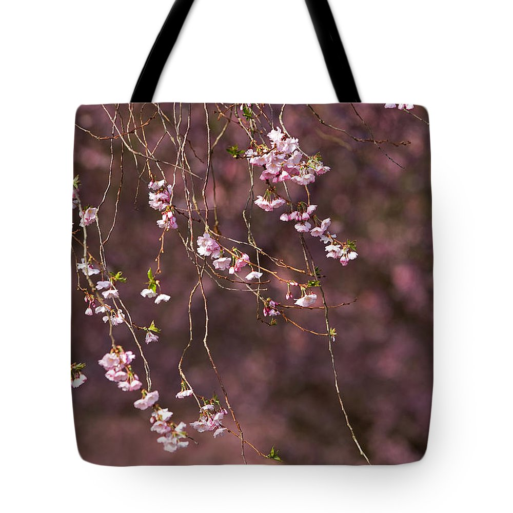 Blossoms Tote Bag featuring the photograph E A S E by Thomas Herzog