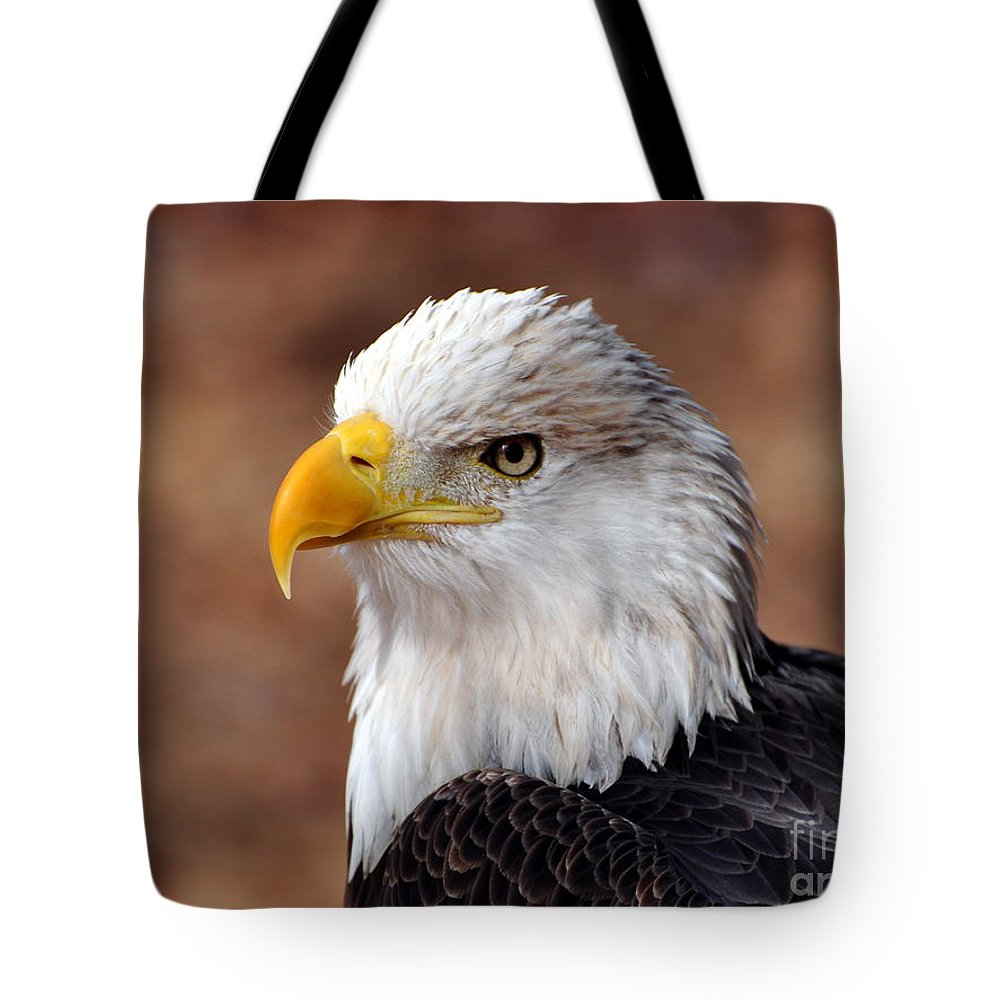 Eagle Tote Bag featuring the photograph Eagle 25 by Marty Koch