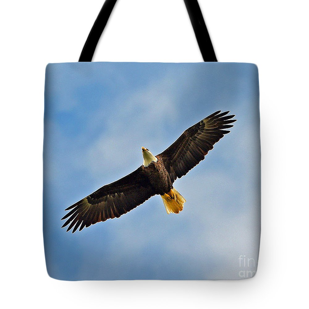 Tote Bag featuring the photograph Eagle In Flight by Don Solari