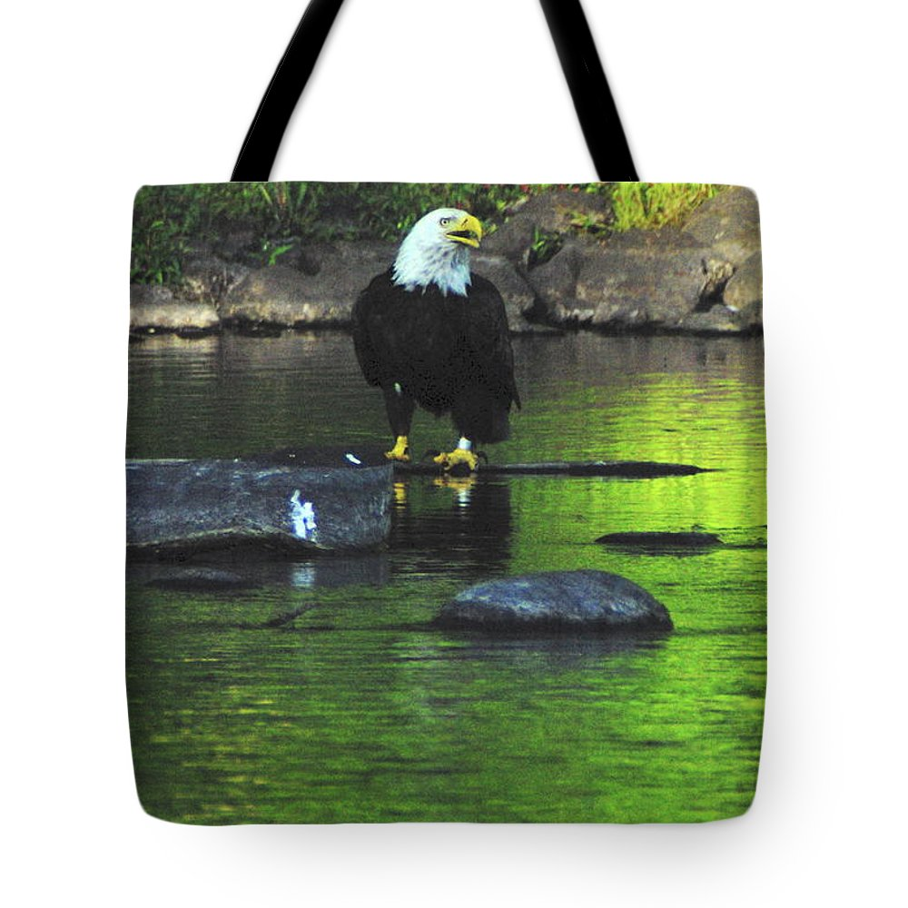 Eagle Tote Bag featuring the photograph Eagle On River Rock IIi by Alice Markham