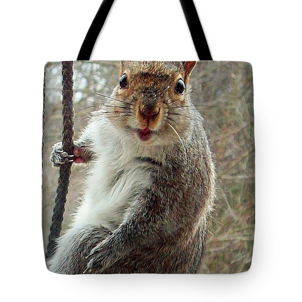 Squirrel Tote Bag featuring the photograph Earl The Squirrel by Robert Orinski