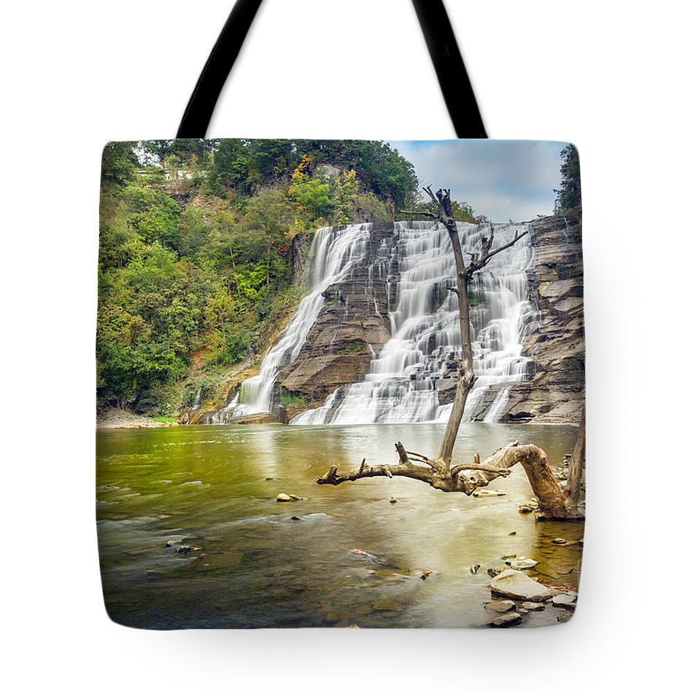 New York Tote Bag featuring the photograph Early Autumn At Ithaca Falls by Karen Jorstad