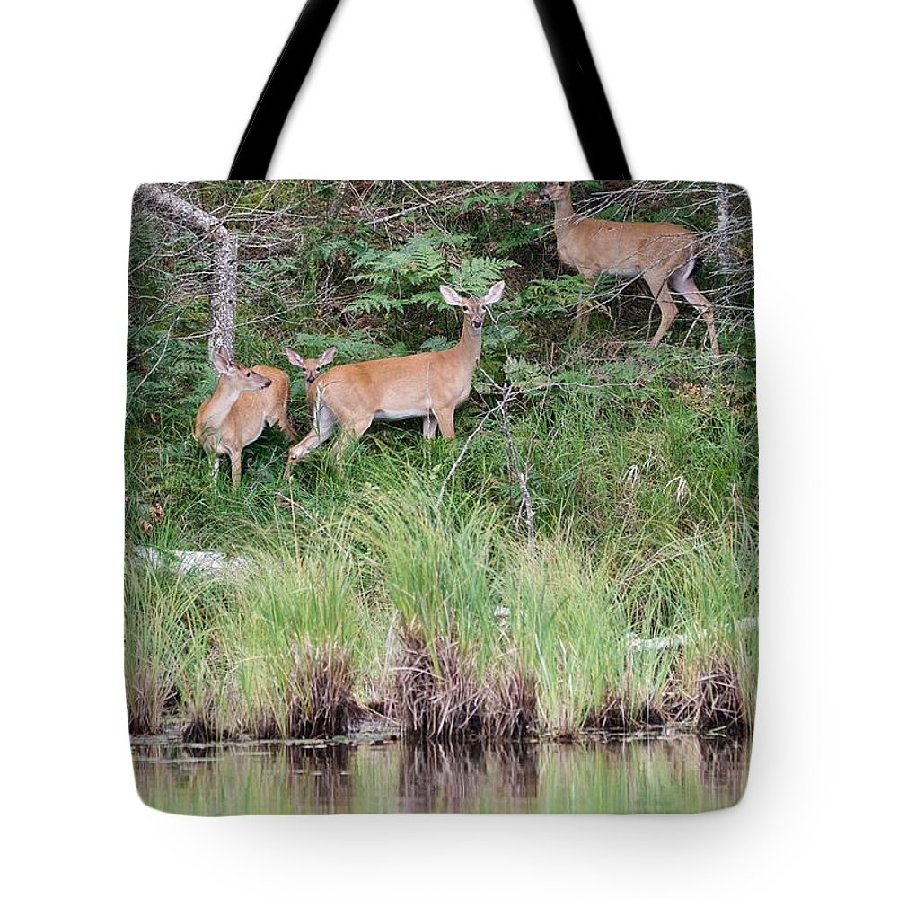Whitetail Tote Bag featuring the photograph Early Morning At The Lake by Michael Peychich