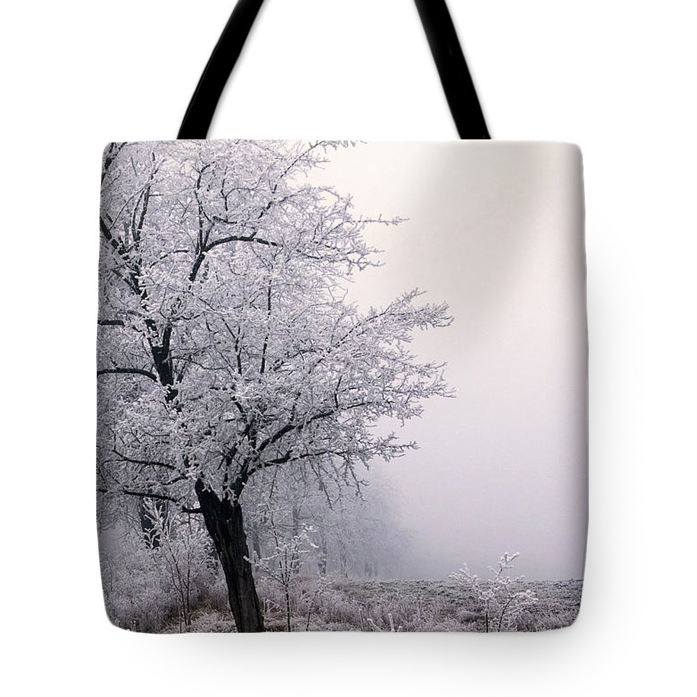 Frost Tote Bag featuring the photograph Early Morning Frost by Cliff Norton