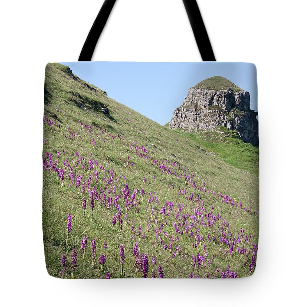 Early Puple Orchids Tote Bag featuring the photograph Early Purple Orchids In The Derbyshire Dales by Bob Kemp