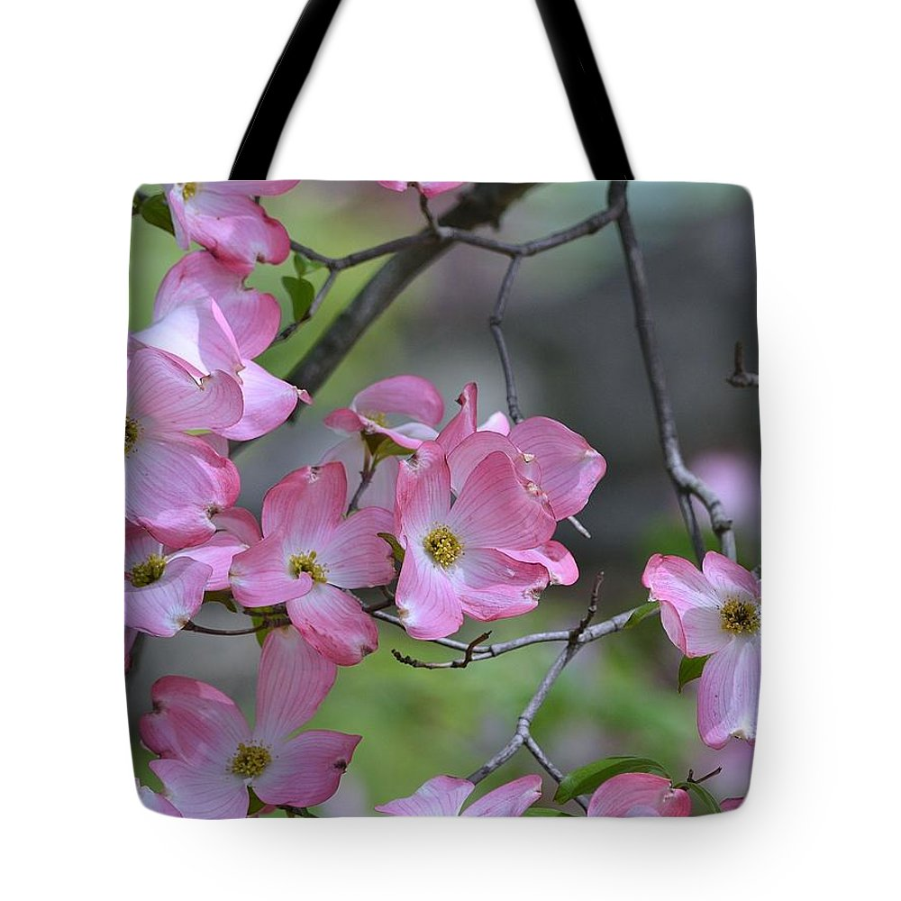Dogwood Tote Bag featuring the photograph Early Spring Color by Kathy Eickenberg