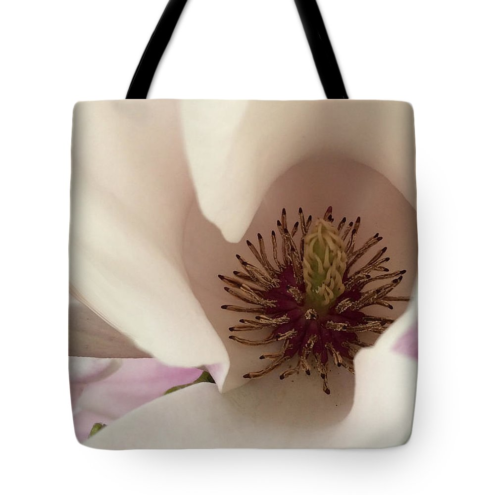 Earlyspring Tote Bag featuring the photograph Early Spring by Janis Kirstein