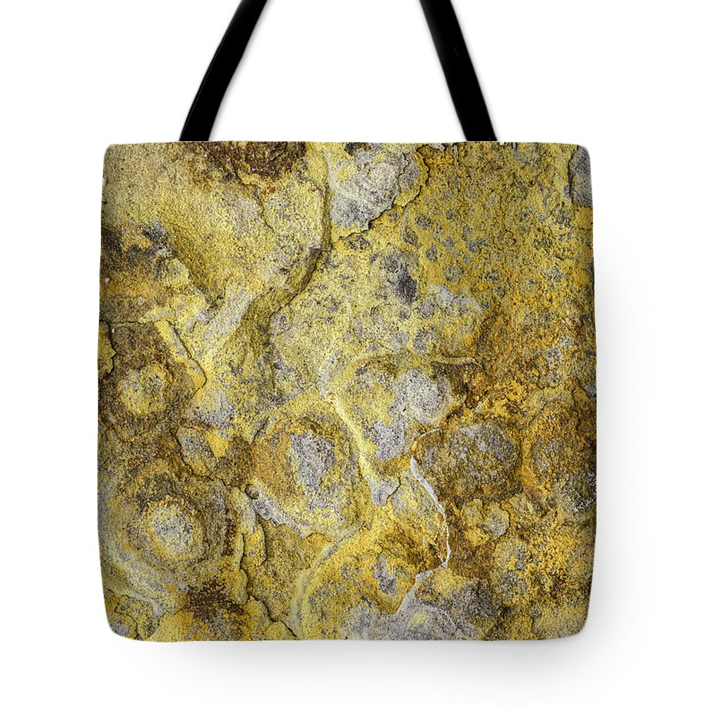 Macro Tote Bag featuring the photograph Earth Portrait 013 by David Waldrop