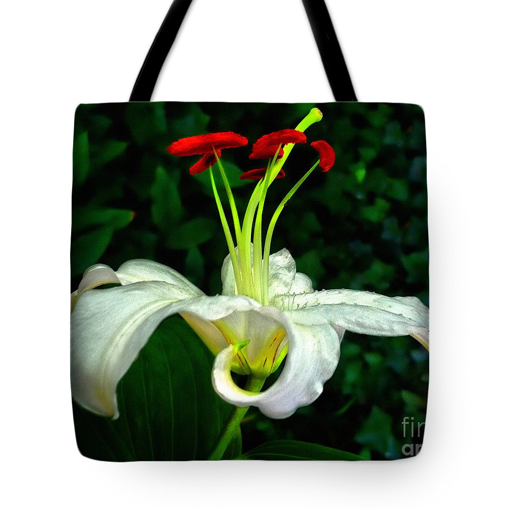 Easter Lily Tote Bag featuring the photograph Easter Lily by Jeff Breiman