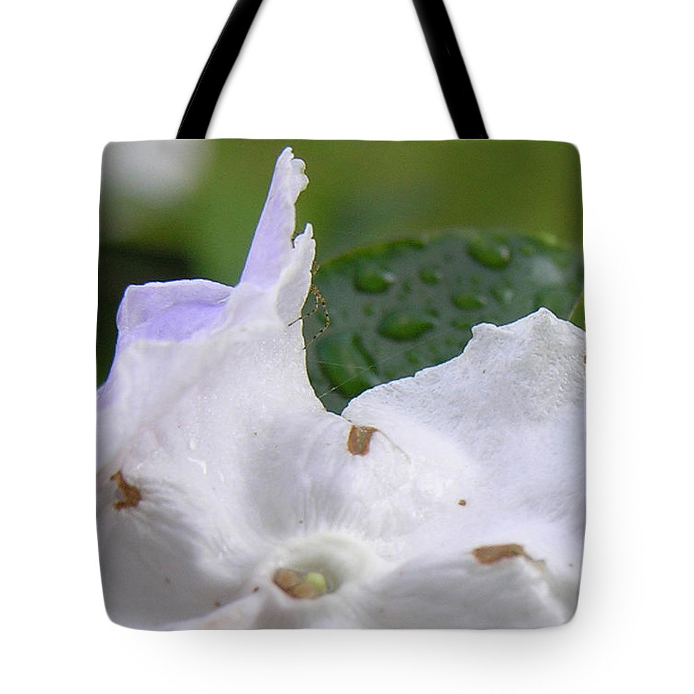 Flower Tote Bag featuring the photograph Easter Surprise by Richard Rizzo