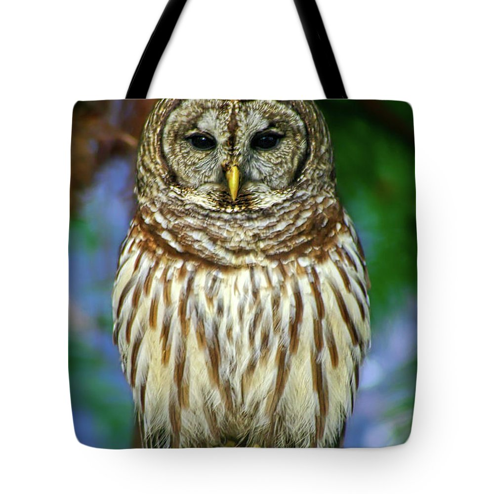Animal Tote Bag featuring the photograph Eastern Barred Owl by Gregory Schultz
