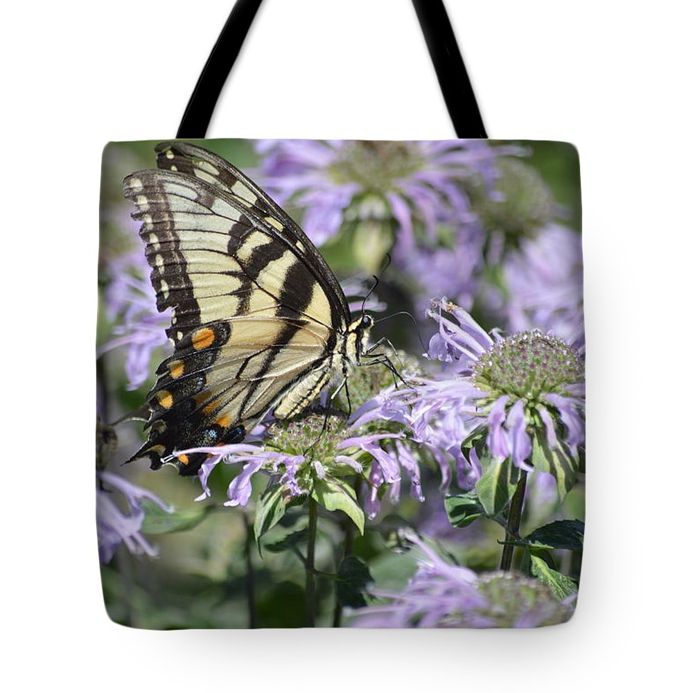 Swallowtail Tote Bag featuring the photograph Eastern Tiger Swallowtail by Kurt Duerksen