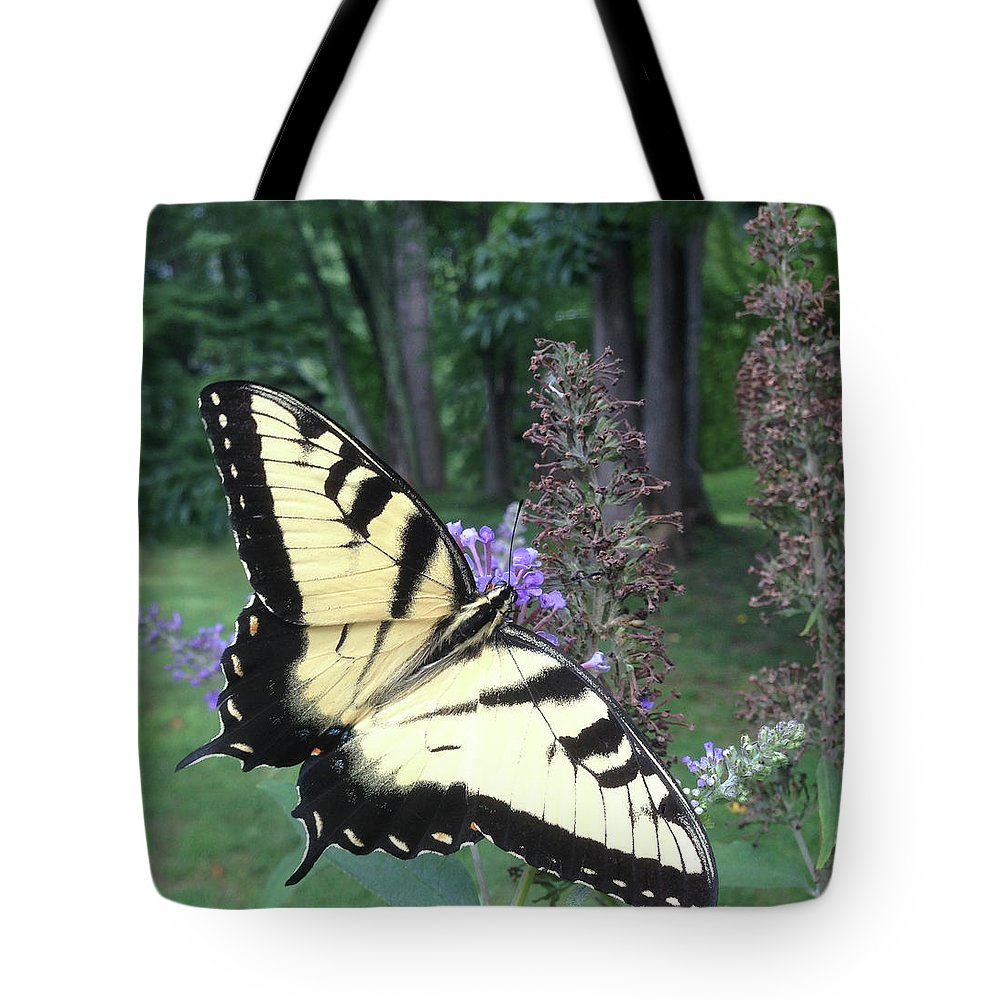 Eastern Tiger Swallowtail Butterfly Butterflies Wall Art Children's Decor Tote Bag featuring the photograph Eastern Tiger Swallowtail Sipping Nectar by Richard Gary Saylor