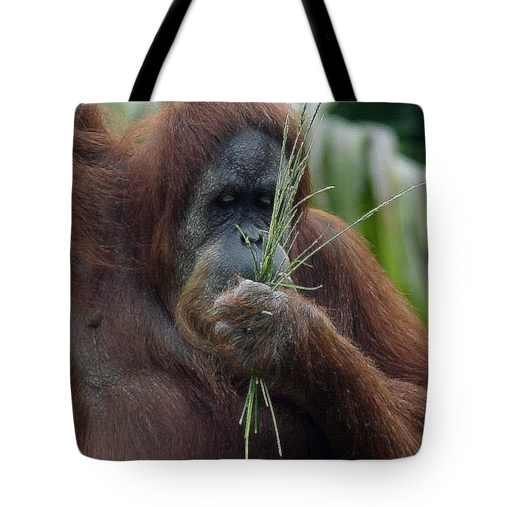 Orangatan Tote Bag featuring the photograph Eat Your Veggies by Mary Haber