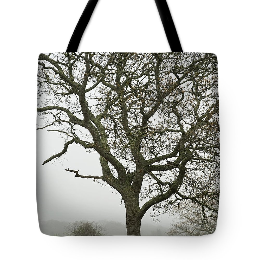 Edgartown Tote Bag featuring the photograph Edgartown Scene by Charles Harden