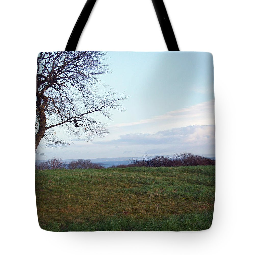 Photography Tote Bag featuring the photograph Edinburgh - Boots On The Tree by Munir Alawi