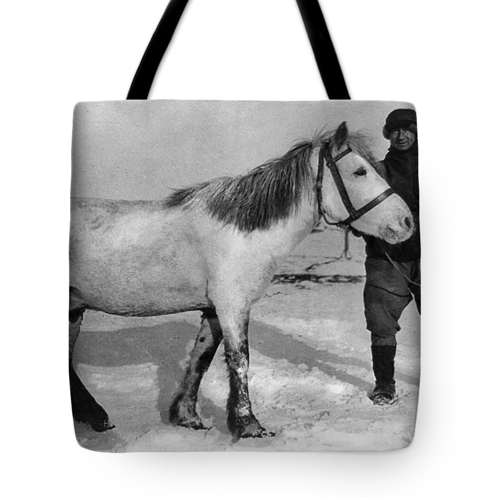 1910 Tote Bag featuring the painting Edward Wilson (1872-1912) by Granger