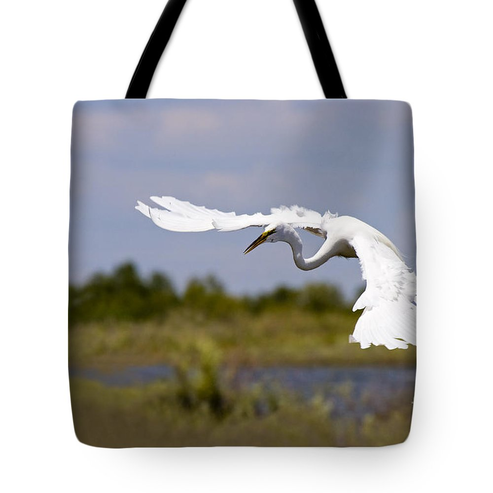 Egret Tote Bag featuring the photograph Egret Ballet by Mike Dawson