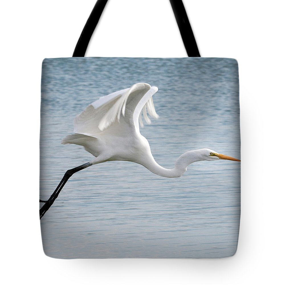 White Bird Tote Bag featuring the photograph Egret Taking Off 2 by Catherine Lau