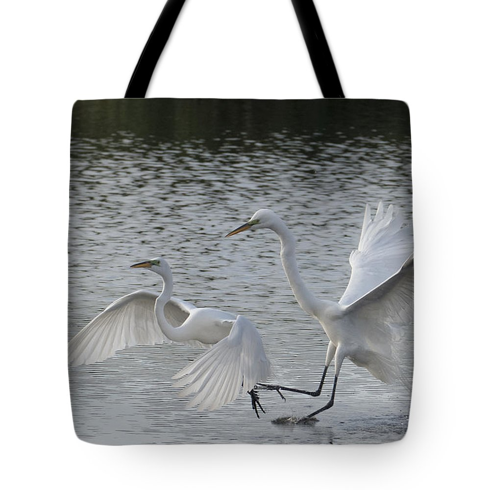 Egrets Tote Bag featuring the photograph Egrets In Flight by Bill Kraft