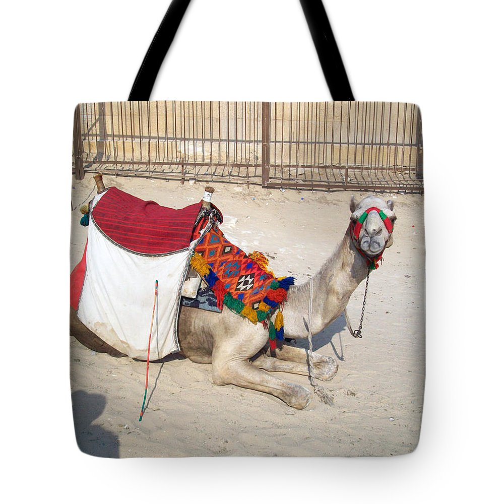 Egypt Tote Bag featuring the photograph Egypt - Camel by Munir Alawi