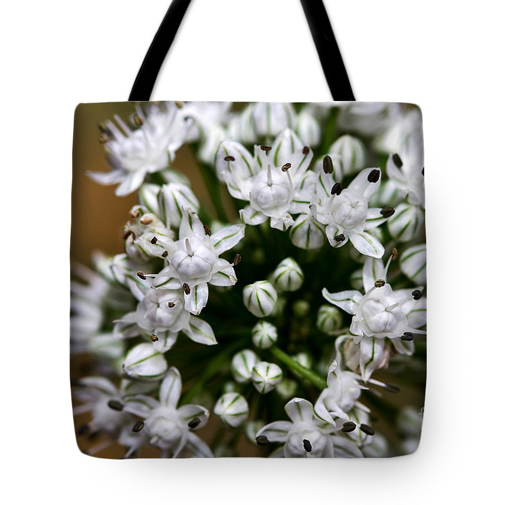 Flower Tote Bag featuring the photograph Egyptian Onion by Louise Heusinkveld