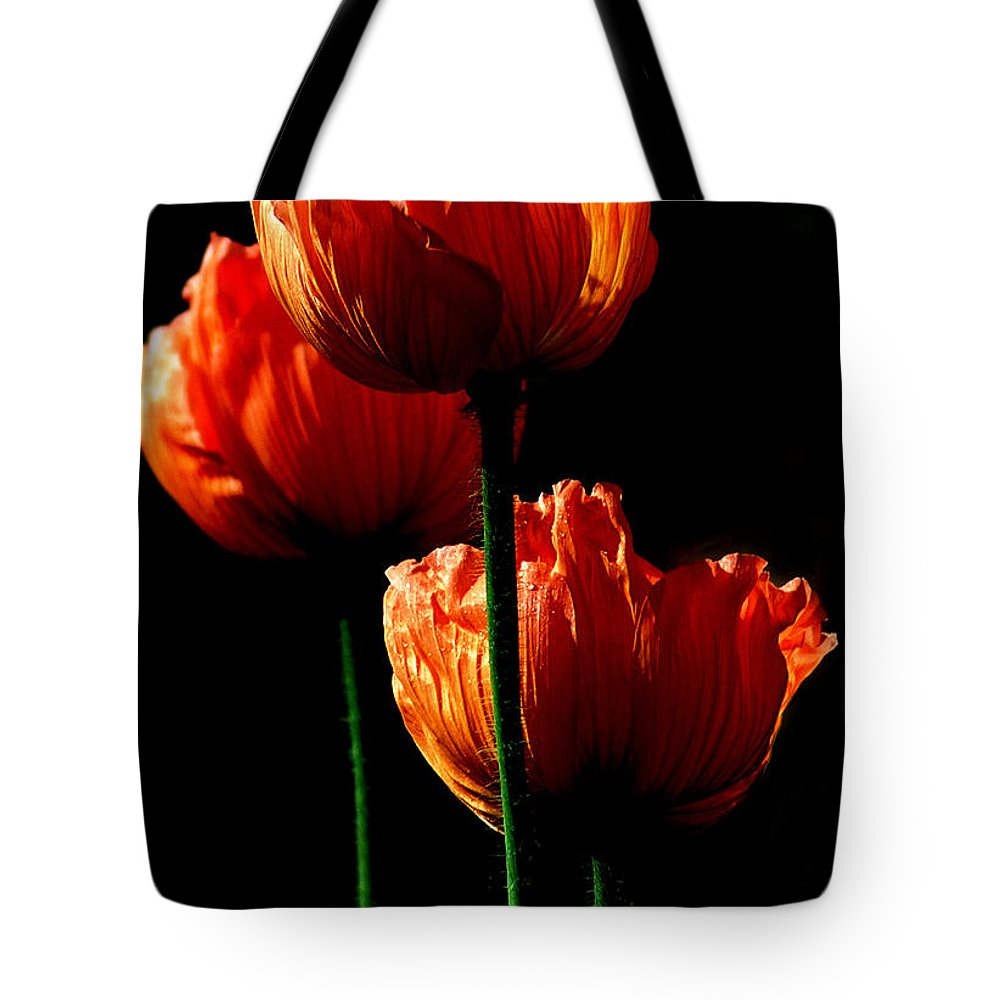 Photograph Tote Bag featuring the photograph Elegance by Stephie Butler
