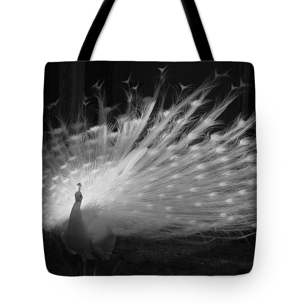 Albino Peacock Tote Bag featuring the photograph Elegant In White by Margaret Bobb