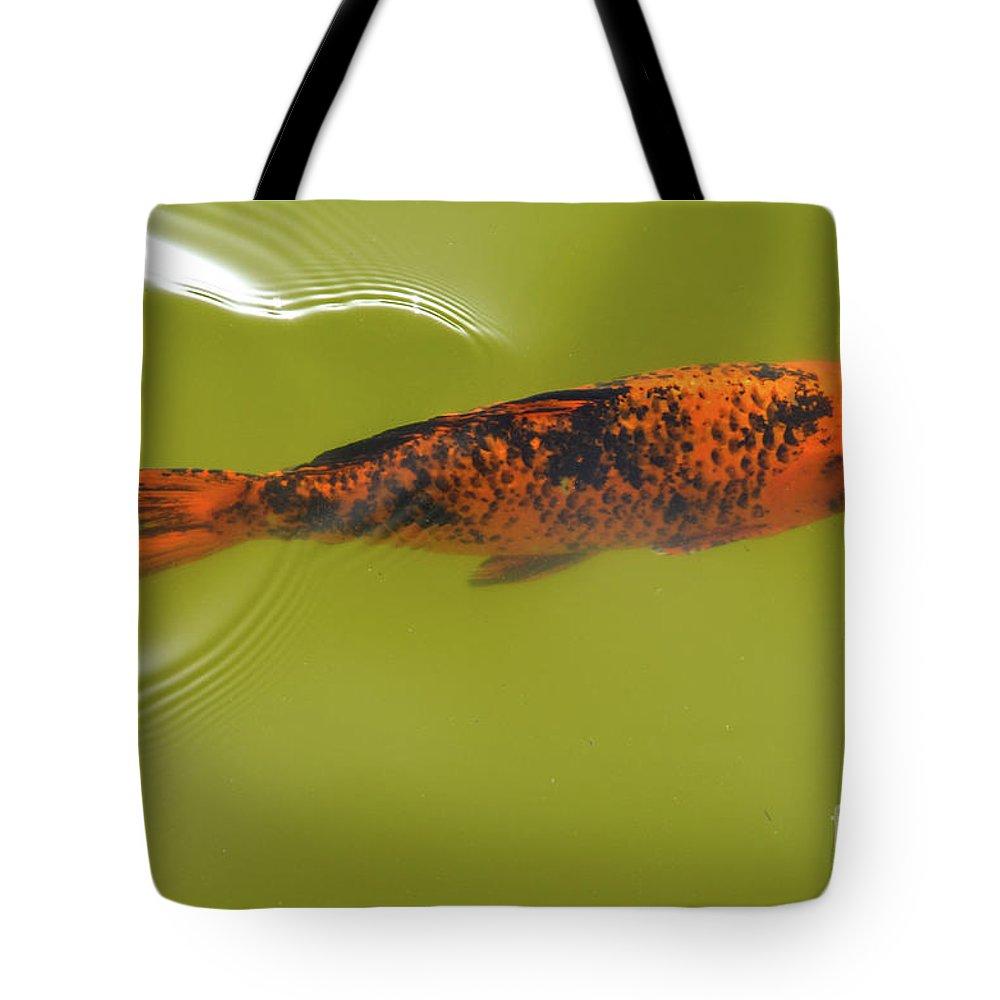 Elegant Swim Tote Bag featuring the photograph Elegant Swim by Des Marquardt